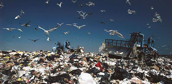 Buffett i Gates milují odpadky