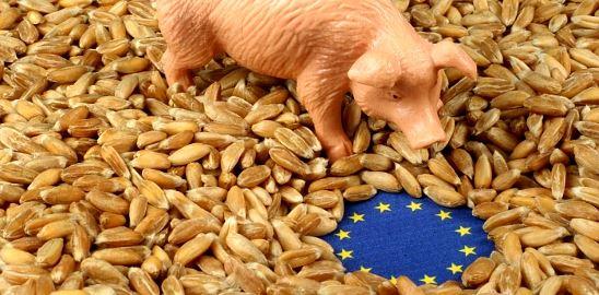 Zemědělská politika EU: Reformovat nebo zrušit?