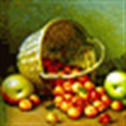Fondy: ani podzimní úroda neláká
