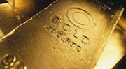 Colosseum: Investice do komodit budou i roce 2011 dobrou volbou