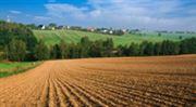 Chcete vydělat? Investujte do půdy.