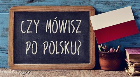 Polsko Polákům: Jak vytlačit cizáky a udělat ekonomiku národní