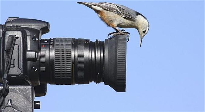 Za miliardy dělá stát z lidí ohyzdy, tvrdí fotografové
