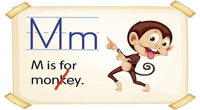 Plať učitele oříšky, svěř děti opičkám