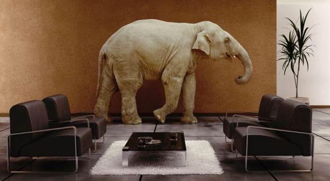 Patnáct slonů v obýváku