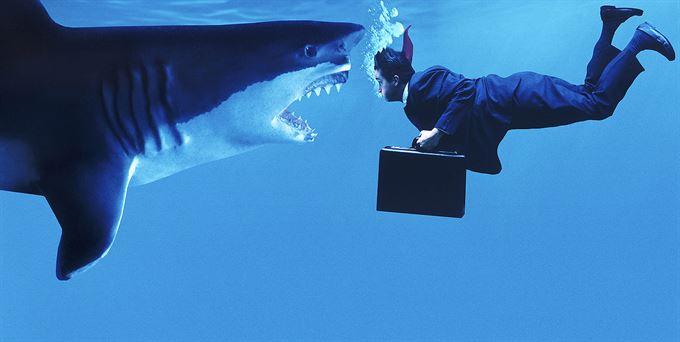 Pozor na žraloky