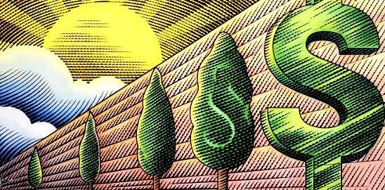 Bohatství roste na stromech. Jen je vysadit!