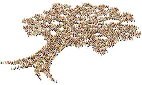 Pokora libertariánů a domýšlivost sociálních inženýrů