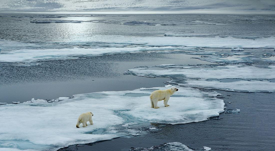 Klimatický lék horší než samotná nemoc