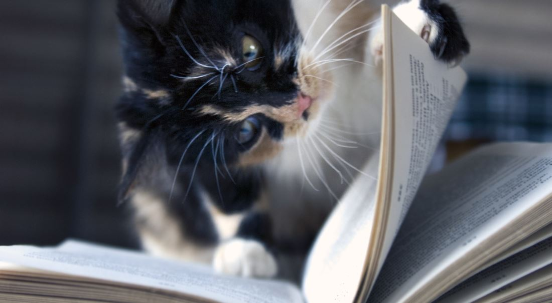 Přečíst ve vlastním zájmu