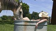 Tipy a triky: jak ušetřit za teplo a vodu