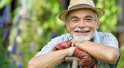 Stát vrátí daně důchodcům i za rok 2013