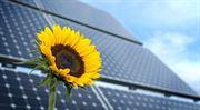 Jak to bylo a je s fotovoltaikou v Česku