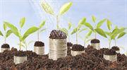 Multisektorové fondy: Dluhopisy, které vydělávají