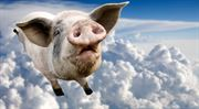 Kovaná ekonomie: Můžou prasata létat na Měsíc?