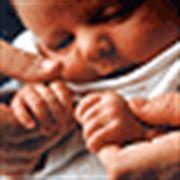 Bude mít pokles porodnosti fatální důsledky?