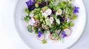 Místo do supermarketu do přírody. Čím nás zásobuje jaro?