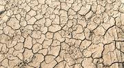 Sucho v Česku. Vytrhne nás dešťová voda?