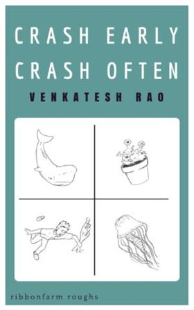 Venkatesh Rao: Crash Early, Crash Often.