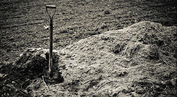 Zakopaný pes české ekonomiky