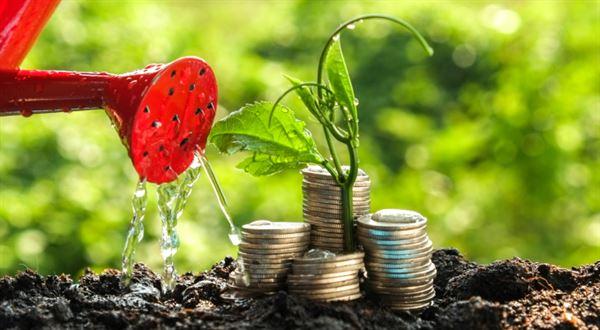 Investice pro začátečníky. Jak fungují podílové fondy a jak si vybrat
