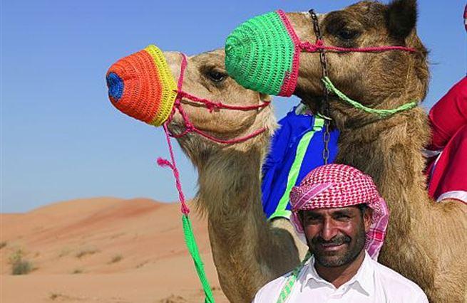 Arabské jaro: hloupý sedlák, který neoře