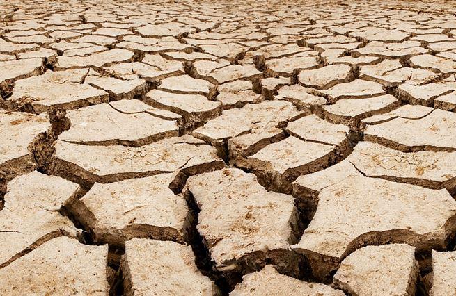 Boj proti změně klimatu prázdná břicha nenaplní