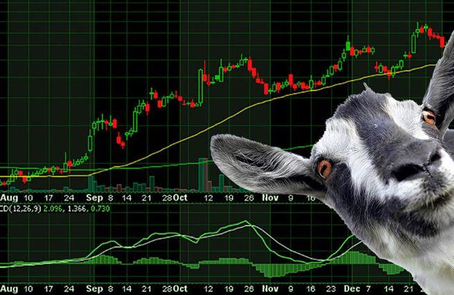 Koza, petržel, hedgeový fond. Co opravdu ukončilo tažení na GameStop
