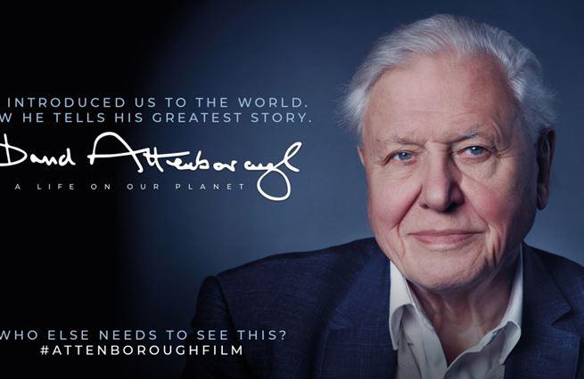 Záchrana světa podle Attenborougha. Skutečně stačí tak málo?
