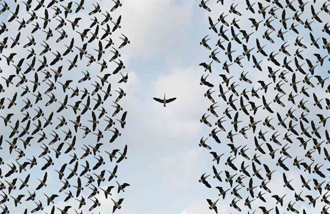 Epochální úkol: přesvědčit individualisty, že žijeme ve společnosti
