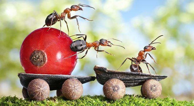 Ohlédnutí: Rok 2012 z pohledu investora