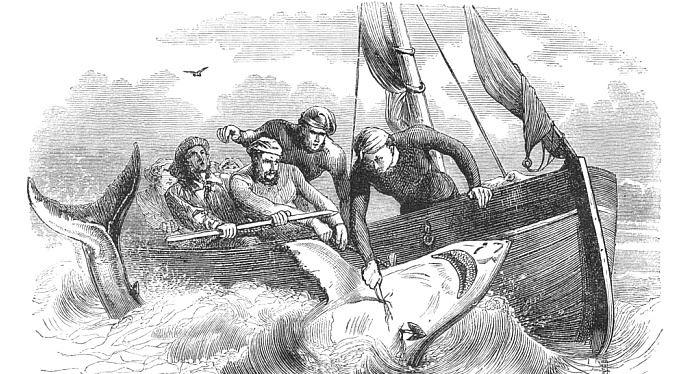 Čistka mezi poskytovateli půjček. Kdo přežil? Co se stalo s úvěrovými žraloky?
