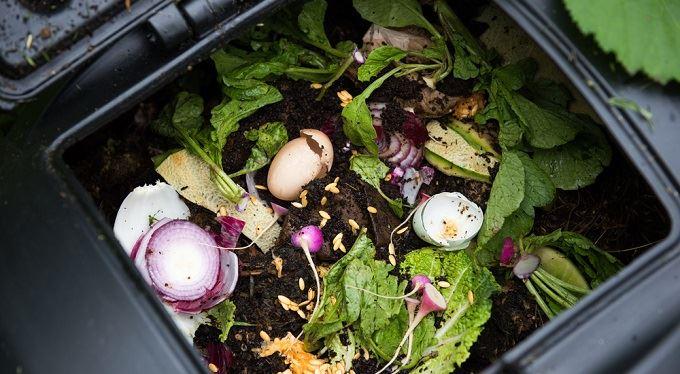Poplatky za odpad. Můžete s kompostérem ušetřit?