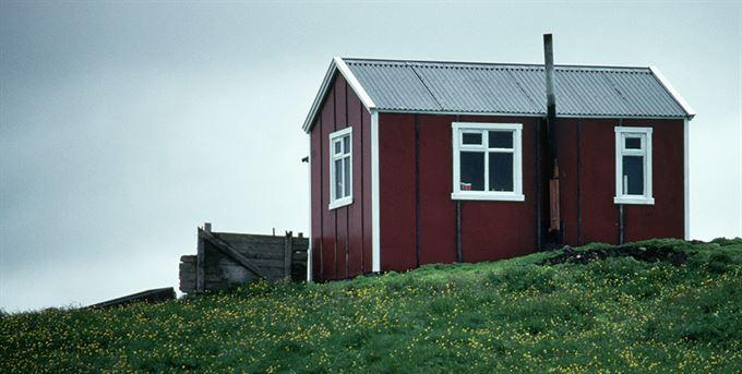 Zasaženi krizí: Island