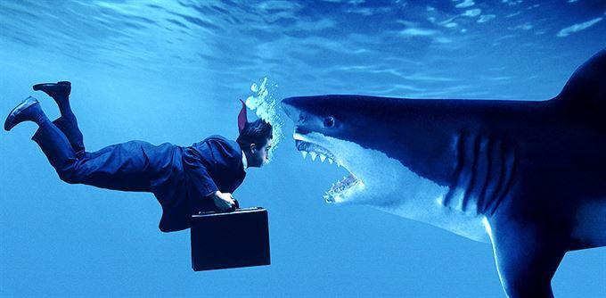 Jak nenaletět finančním žralokům