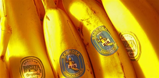 Unijní pokrytectví: Bez cel, bez kvót, bez banánů!