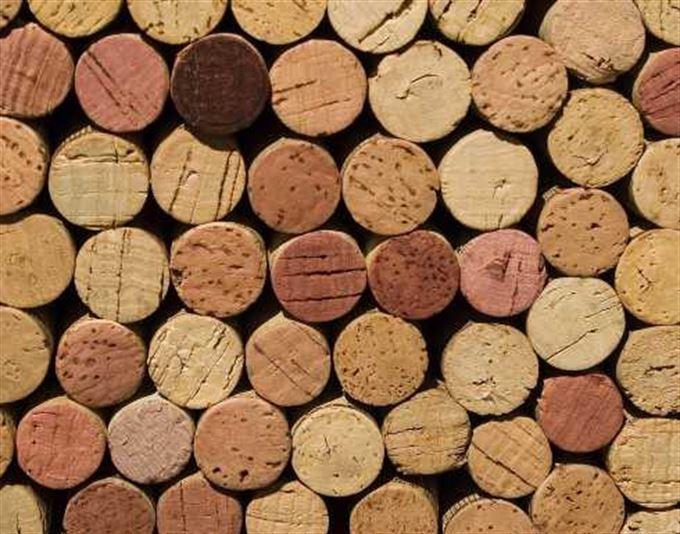 Anketa: Spotřební daň na víno? Co radši zrušit ministerstvo školství?
