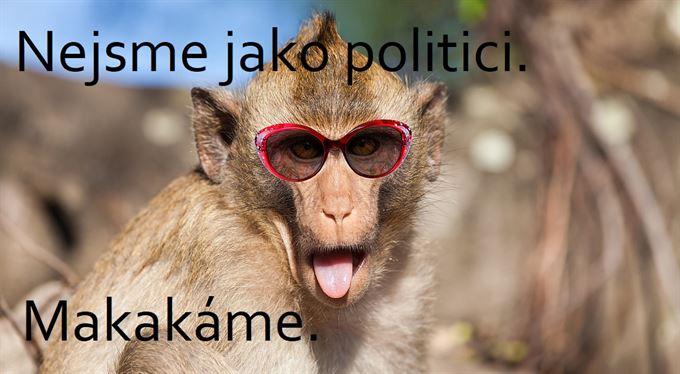 Když vám všechno hraje do karet, zvládne ministra financí i cvičená opice