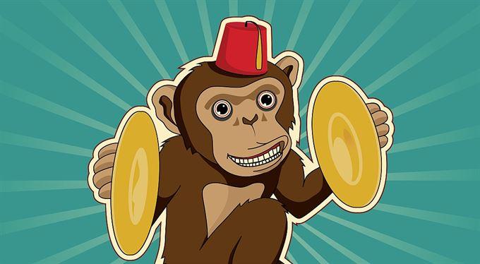 Turek z opice rozhodně není