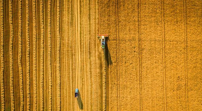 Drobní rolníci plačte. Dotace vždycky zbaští korporace