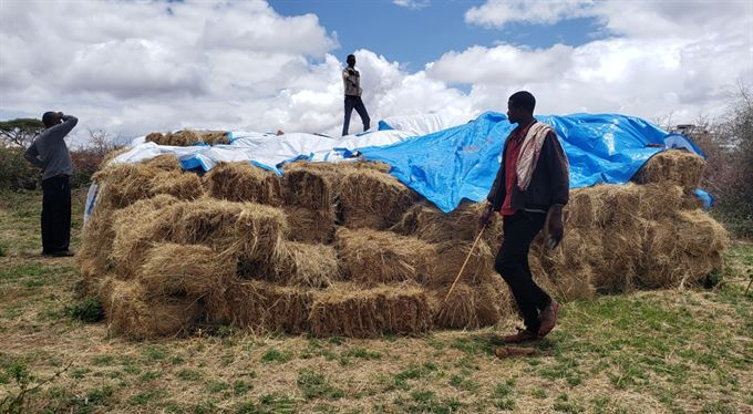 Humanitární organizace CARE: Česká pomoc v Etiopii